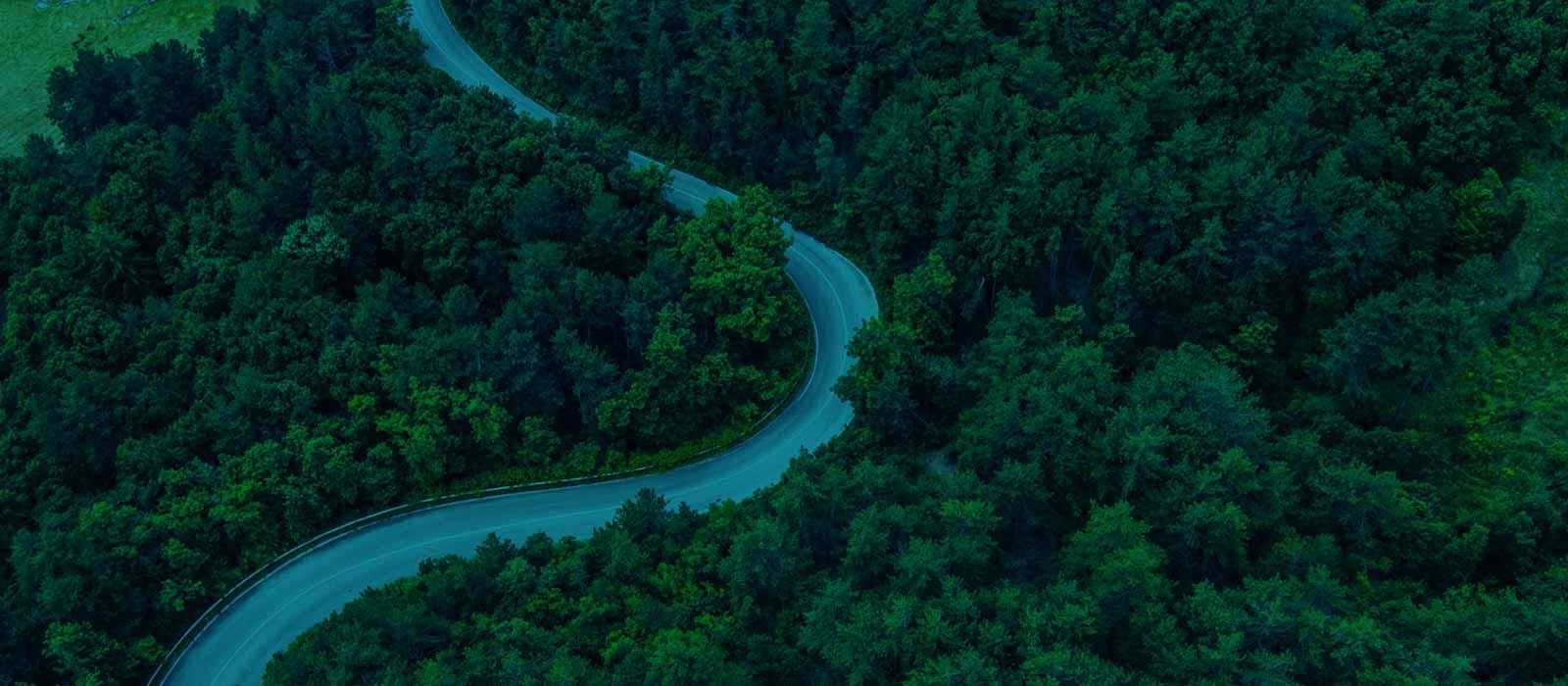 Drive Sustainability